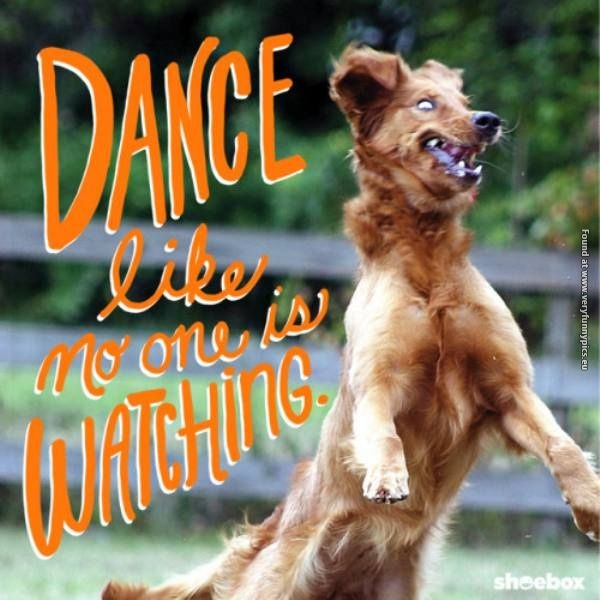 This dog knows how to dance