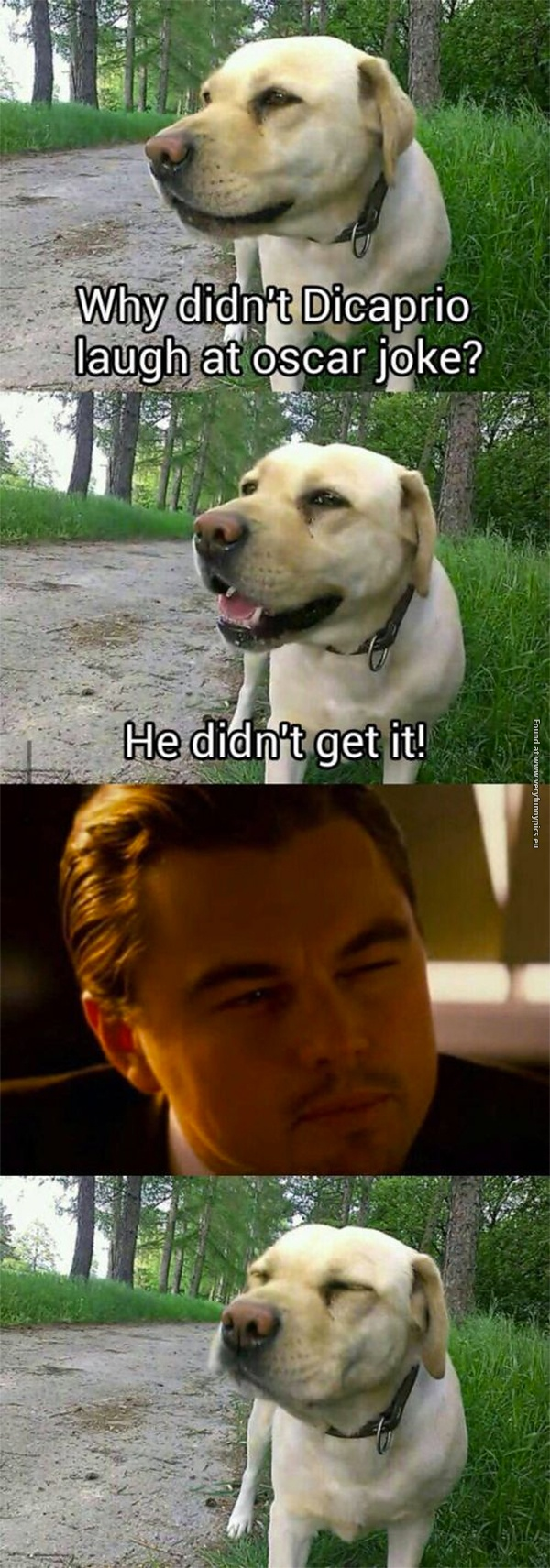 Just another DiCaprio Oscar joke