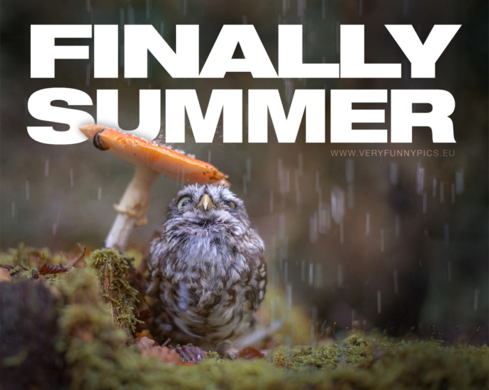 When the summer finally comes