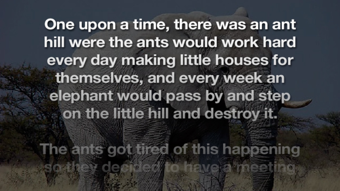 A classic joke about the ants who decided to beat up an elephant