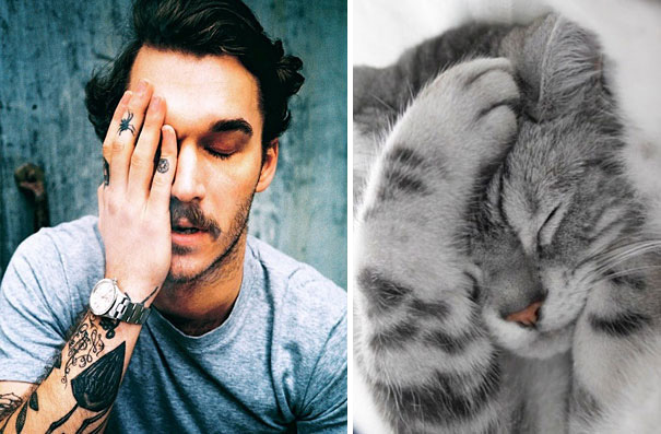 funny pictures male models and cat lookalikes 03