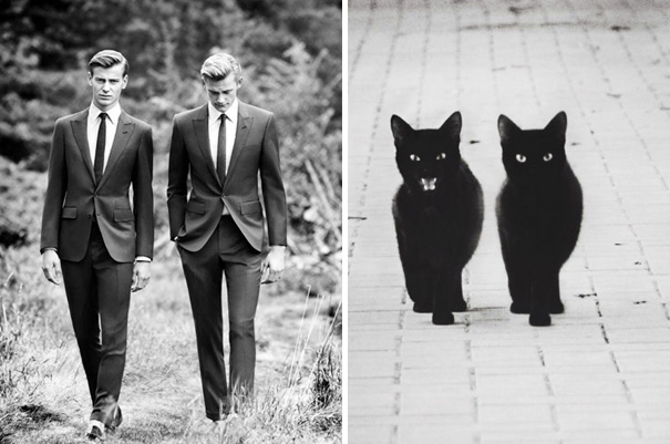 funny pictures male models and cat lookalikes 13