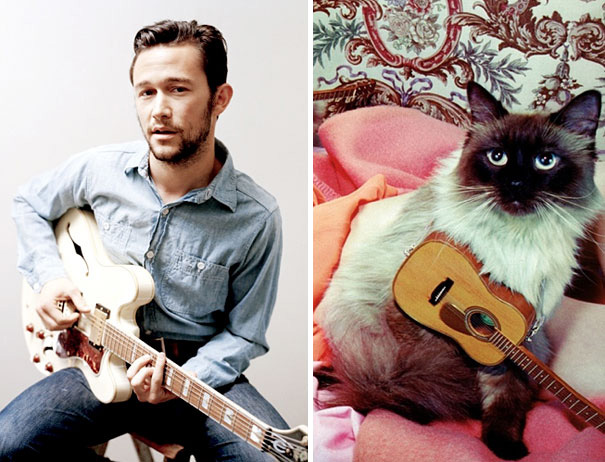 funny pictures male models and cat lookalikes 15