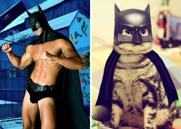 funny pictures male models and cat lookalikes 18