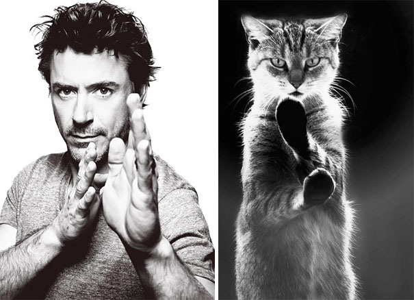 funny pictures male models and cat lookalikes 19