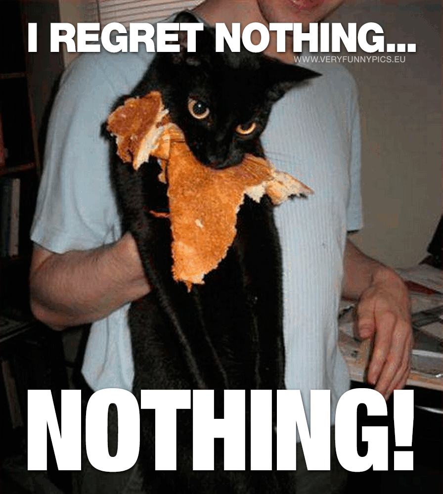 Cat with pancake in mouth - I regret nothing... Nothing!