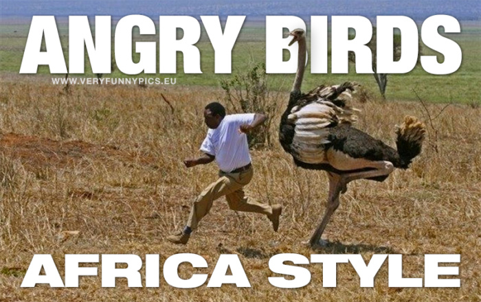 Playing Angry Birds is more dangerous in Africa than in Europe