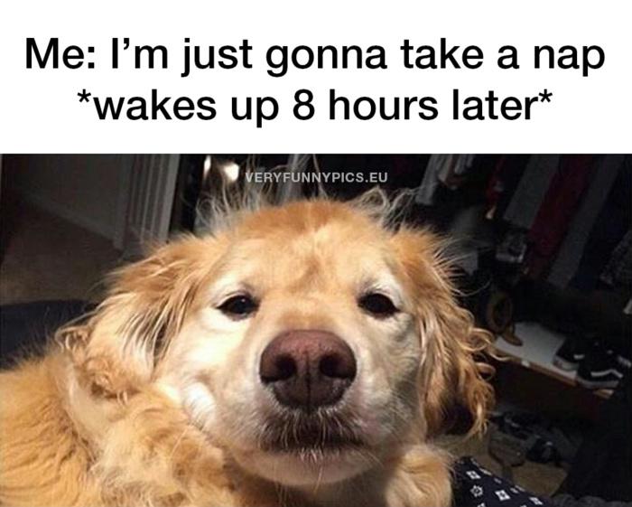 When you're gonna take a nap