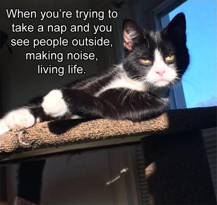 That disturbing moment when others are living their life