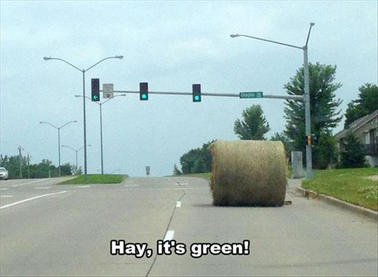 Hay at a traffic light wordpay - Hay, it's green!
