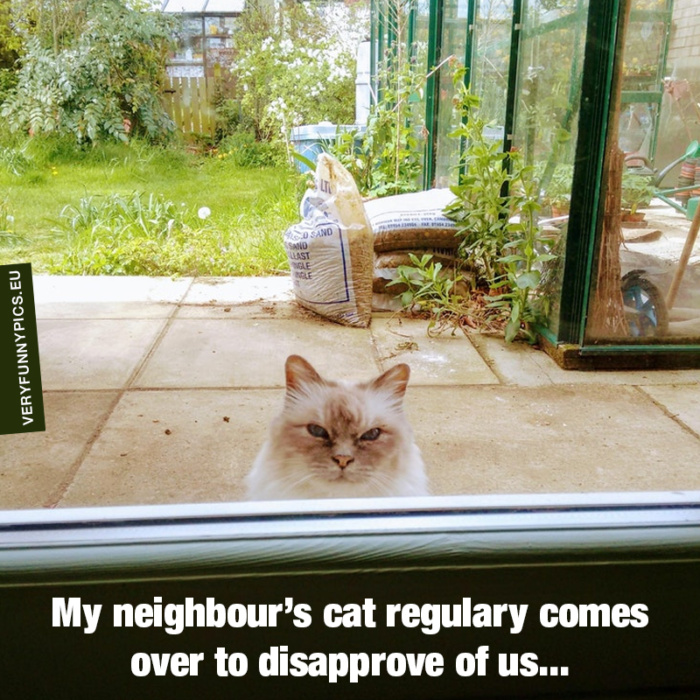 Tough neighbourhood…