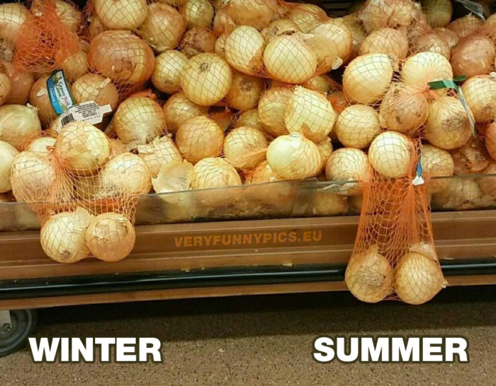 The downside of summer