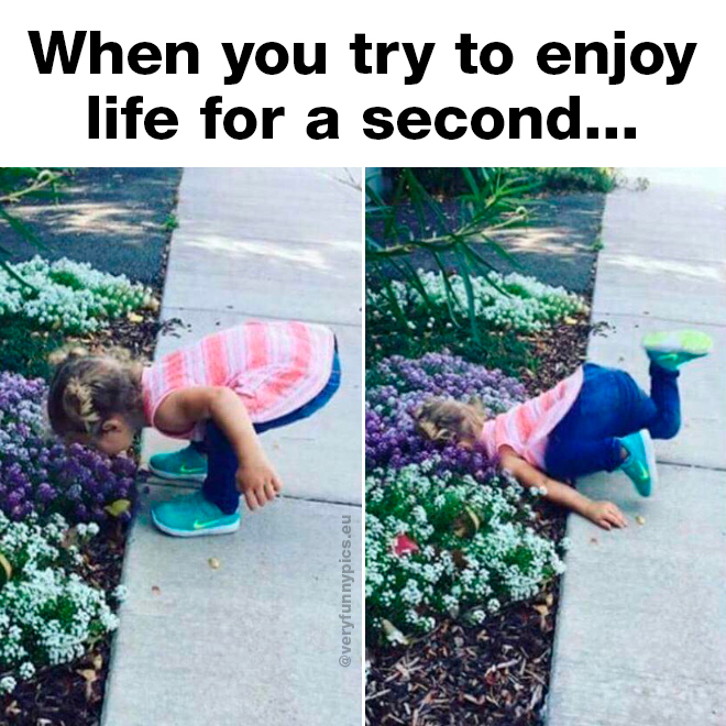 Kid smelling flowers and falls into them
