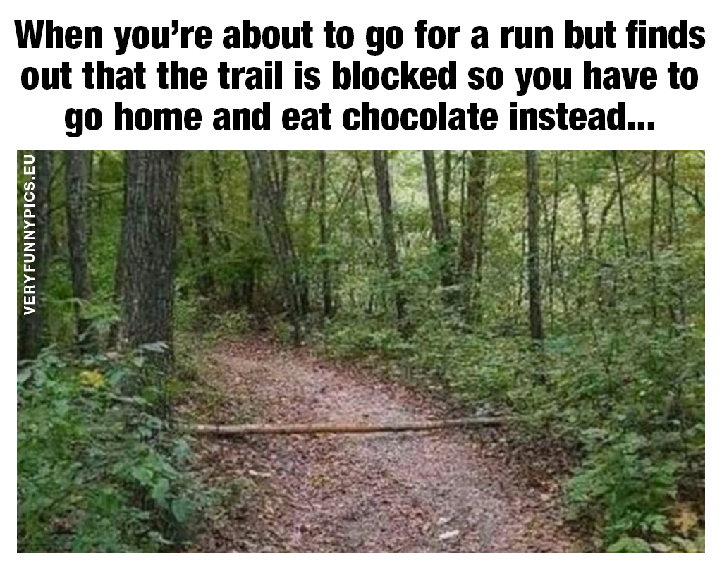 Funny quote about running