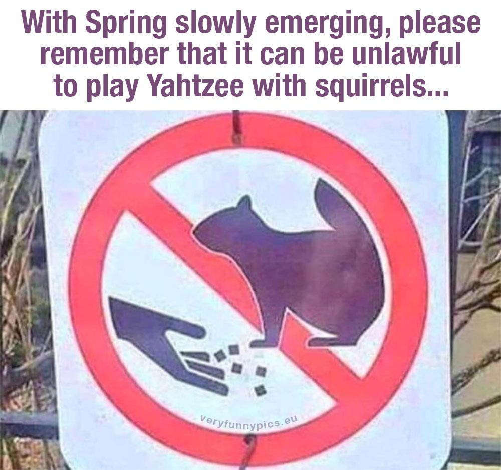 No feeding squirrels sign