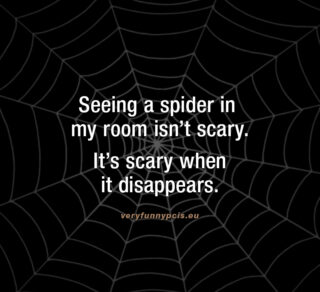 The scary thing about spiders