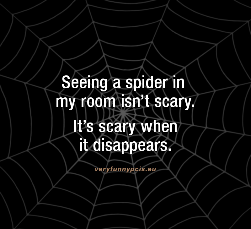 Funny quote about spiders