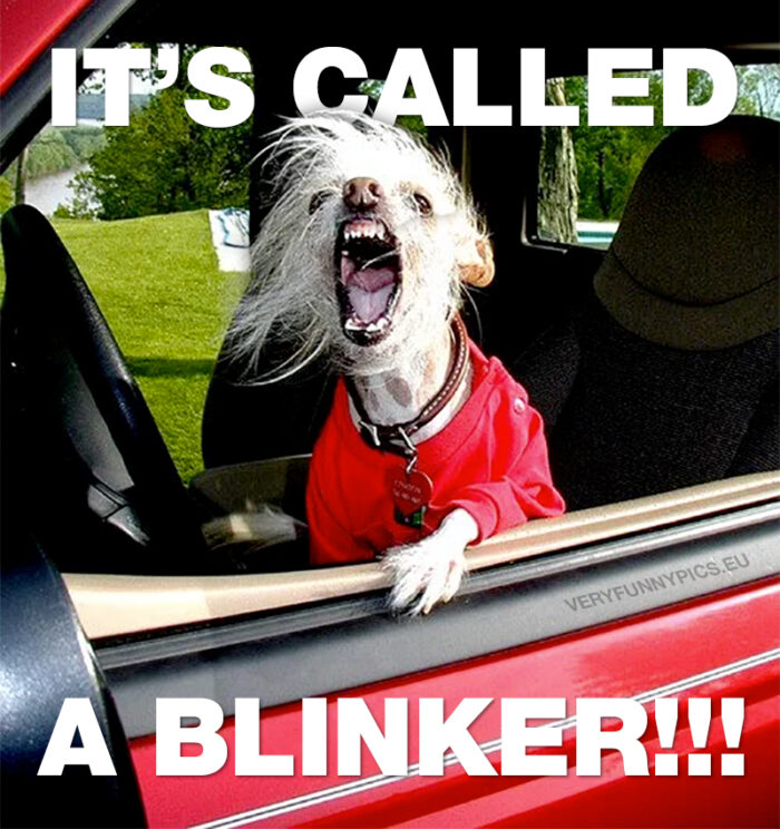 Keep calm and use your blinker